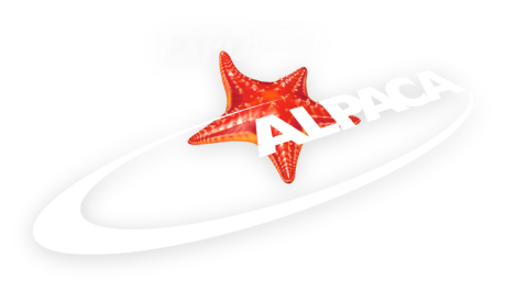 Alpaca Expo Group - Custom Exhibition Stands